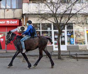 Viata i s-a schimbat complet dupa ce a fost prins cu calul in centrul Iasiului! Morosanu vrea sa-i construiasca o casa! Gest impresionant in timpul pandemiei
